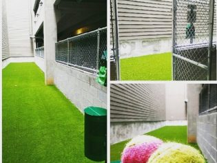 Now Open – The Dog Run!