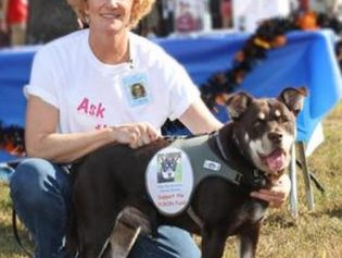 DogFest Walk-A-Thon